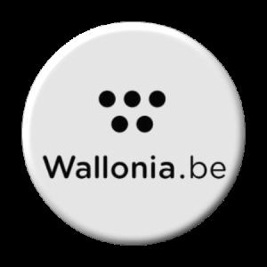 Wallonie : Gestionnaire du réseau électrique